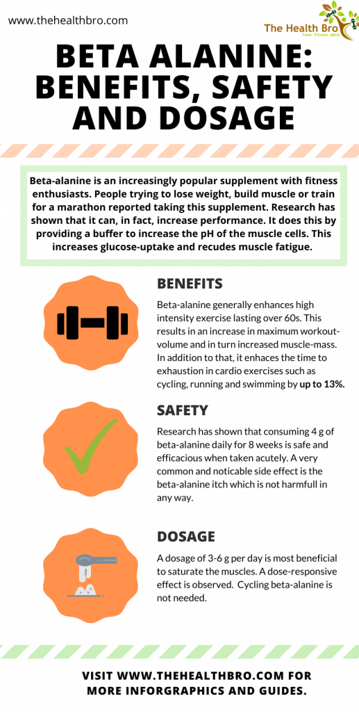 Beta alanine benefits, safety and dosage. Infographic about the benefits, the safety and the dosage of the supplement.