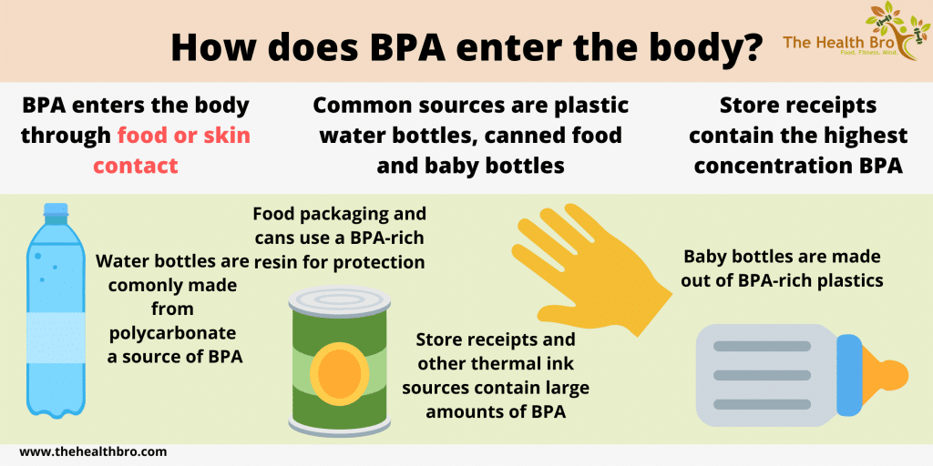 bpa infographic about how it enters the body